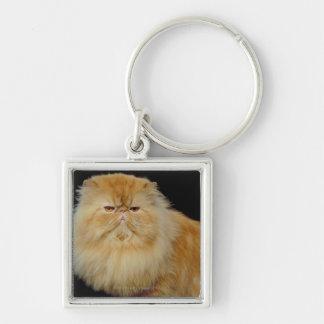 Long chat russe de cheveux porte-clé carré argenté