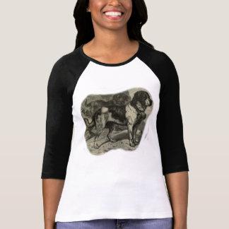 Long T-shirt de douille de St Bernard