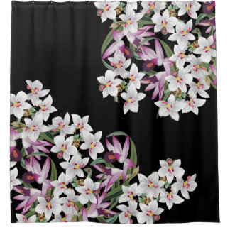 L'orchidée blanche tropicale fleurit le rideau en