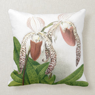 L'orchidée botanique de Cypripedium fleurit le Oreiller