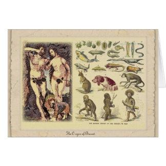 L'origine du basset carte de vœux
