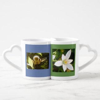 Lot De Mugs Les conceptions parfaites de couleur à la couleur