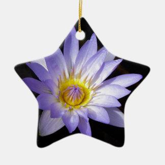lotus bleu du Nil Ornement Étoile En Céramique