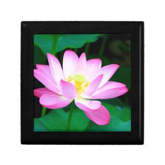 lotus boîte à souvenirs