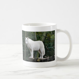 Loup blanc sauvage mug blanc
