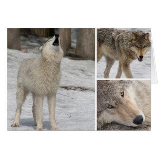 Loup - carte de voeux - masquez le personnalisent