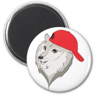 Loup dans la casquette de baseball aimant