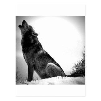 Loup d'hurlement dans la neige carte postale