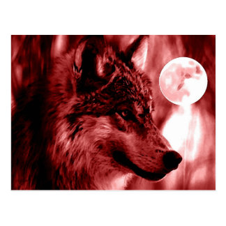 Loup et lune carte postale