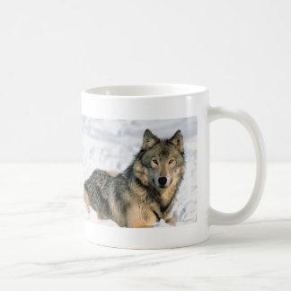 Loup étendu mug
