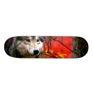 Loup gris dans le beau feuillage rouge et jaune mini skateboard 18,7 cm