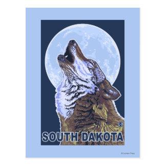 Loup gris HowlingSouth Dakota Carte Postale