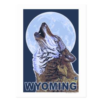 Loup gris HowlingWyoming Cartes Postales