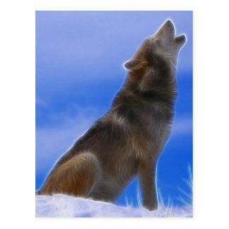 Loup gris mis en danger par hurlement isolé carte postale