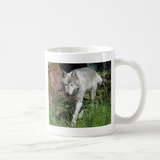 Loup gris mug blanc