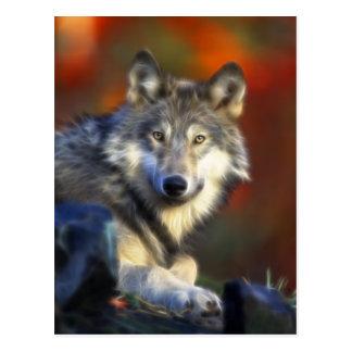 Loup gris, photo numérique d'espèce menacée cartes postales
