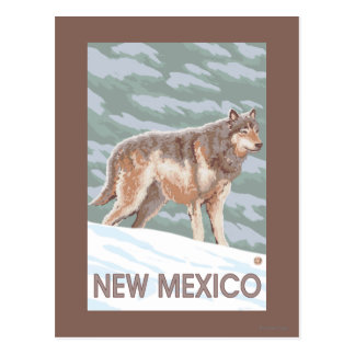 Loup gris StandingNew Mexique Cartes Postales