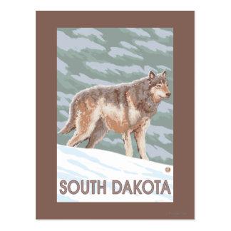Loup gris StandingSouth Dakota Carte Postale