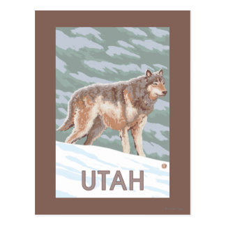 Loup gris StandingUtah Carte Postale