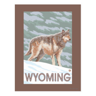 Loup gris StandingWyoming Cartes Postales