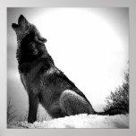 Loup hurlant à la copie d'affiche de lune - affich