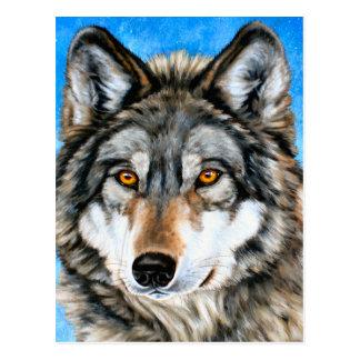 Loup peint carte postale