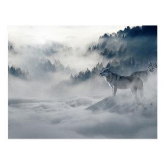 Loups en carte postale d'hiver