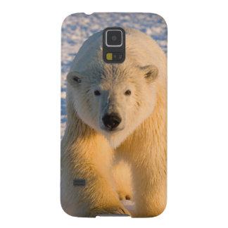 l'ours blanc, maritimus d'Ursus, polaire Coques Pour Galaxy S5