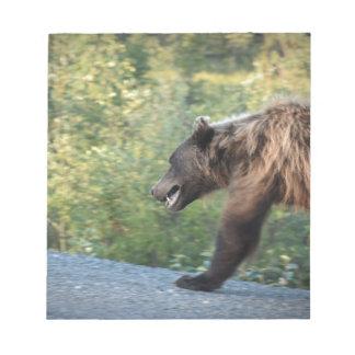 L'ours gris le Yukon, Canada attaque, des Bloc-note