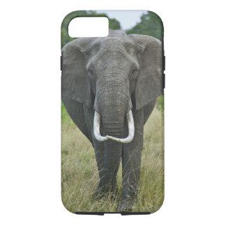 Loxodonta d'Elephantna d'Africain, jeu de Mara de Coque iPhone 8/7