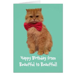 Luigi la carte d'anniversaire de chat de lion