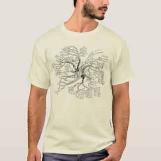 LUMIÈRE de T-shirt d'arbre de maths