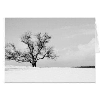 L'un arbre dans la carte de voeux d'hiver