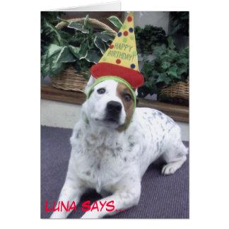 """Luna indique le """"joyeux anniversaire """" cartes"""