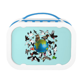 Lunch Box Birdorables autour du monde