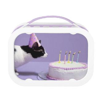 Lunch Box Casquette de port d'anniversaire de chat soufflant