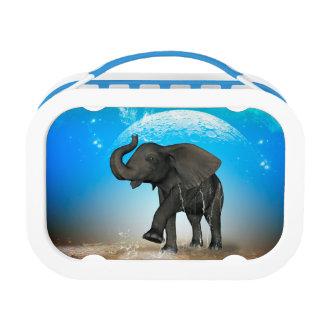Lunch Box Éléphant mignon de bébé