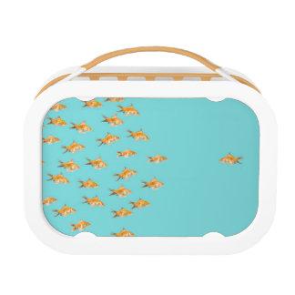 Lunch Box Grand groupe du poisson rouge faisant face à un po
