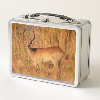 Lunch Box Impala