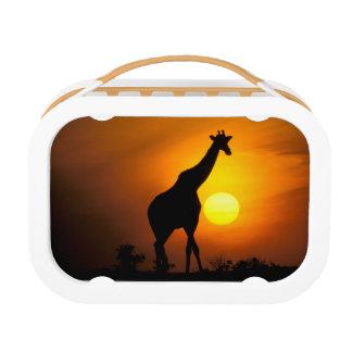 Lunch Box L'Afrique, Kenya, masai Mara. Girafe (girafe
