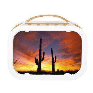Lunch Box L'Amérique du Nord, Etats-Unis, Arizona, désert de