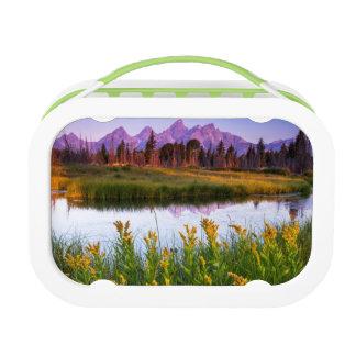 Lunch Box Lever de soleil de Teton