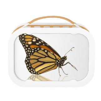 Lunch Box Papillon de monarque