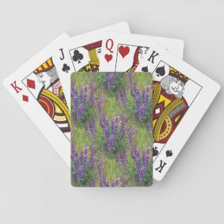Lupines en abondance… cartes à jouer
