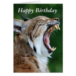Lynx, belle carte de joyeux anniversaire de photo