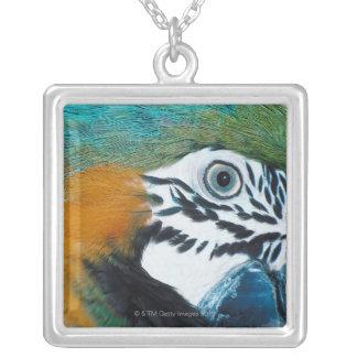 MacawÊ Bleu-et-jaune Pendentif Carré