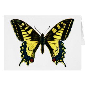 Machaon de Papilio Carte De Vœux