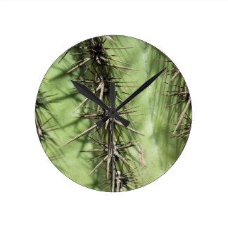 macro étroit des épines de cactus horloge ronde