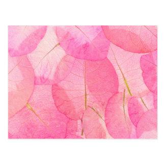 macro feuille rose carte postale
