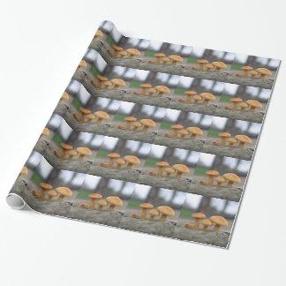 Macro papier d'emballage de champignons minuscules papier cadeau
